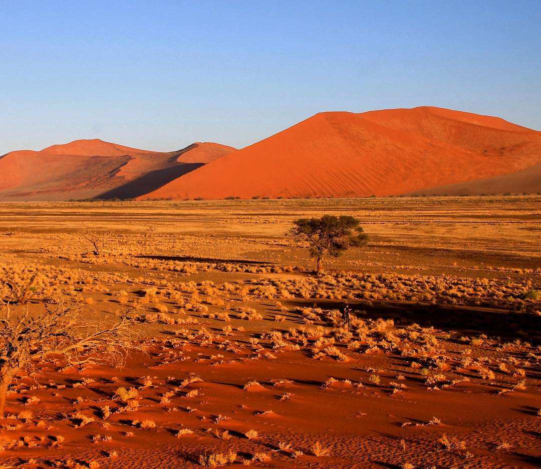 A bright orange sunrise over the dunes of Sossussvlei Namibiahellip