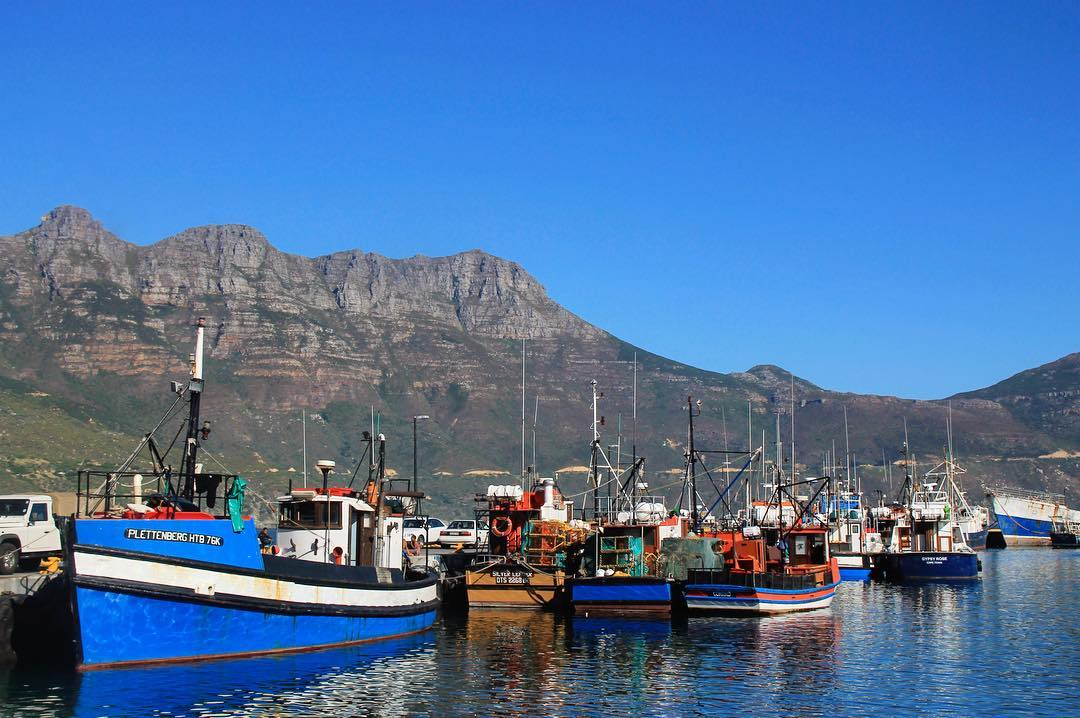 More boats this time in Hout Bay Cape Town