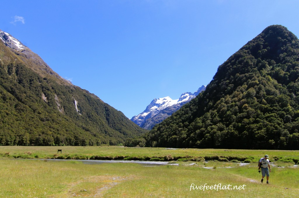 The Routeburn Flats. Right in front of you is another trail not part of the main Routeburn