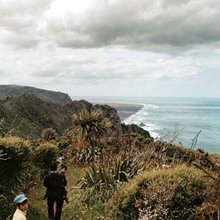 A day in Waitakere Auckland NZ NewZealand Auckland Waitakere visitaucklandhellip