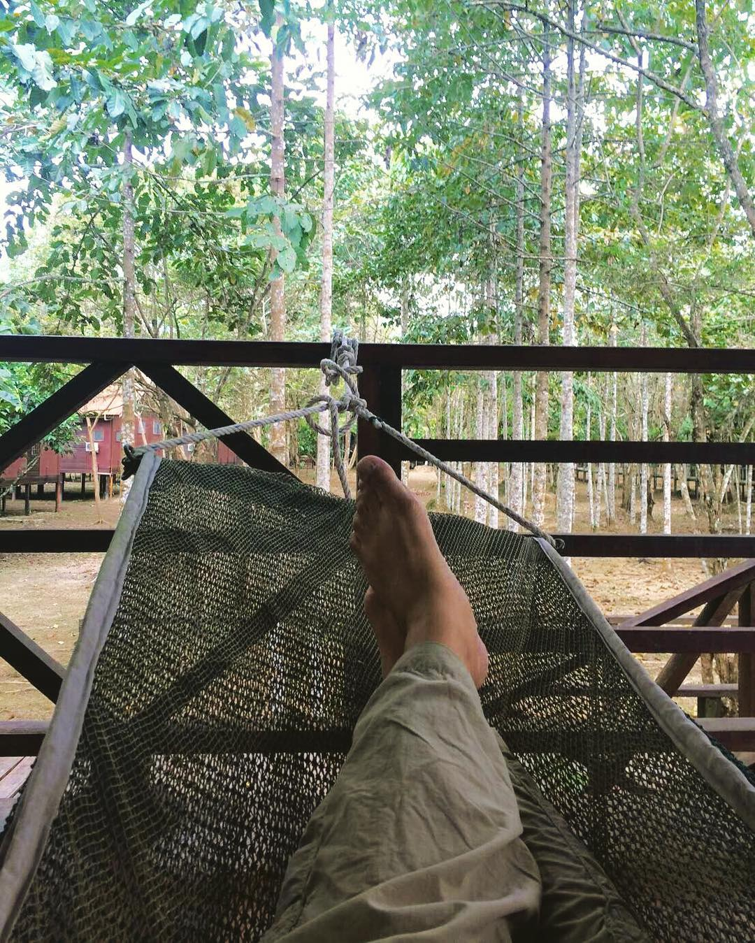 Just another relaxing day in a hammock near the Kinabatanganhellip