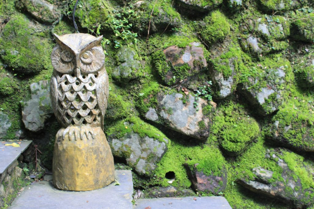 Owls are a recurring motif in indigenous art